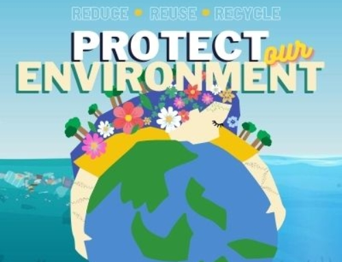 Protecting our Environment Starts with Us