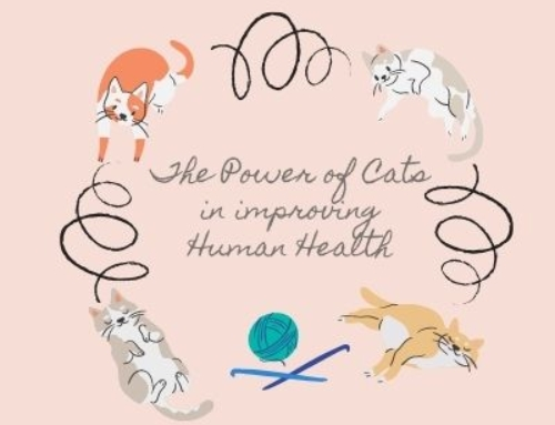The Power of Cats in improving Human Health